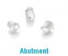 DT2_abutment2